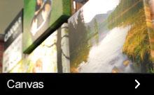 Our canvas range